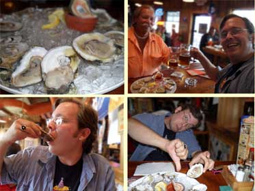 Raw Oysters at Hooters, Picture